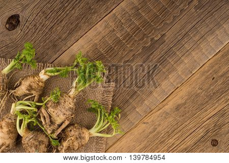 Celery root on the old wooden background