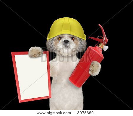 Cute firefighter dog is ready to work -- isolated on black
