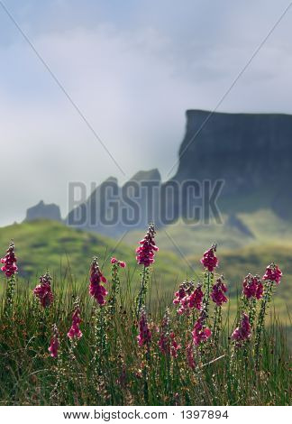 Skye Mountains