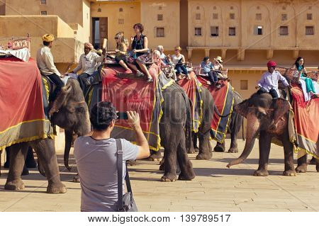 Jaipur, India, november 10, 2011: Indian elephant riders ride with tourists to Amber Fort. Man with mobile phone taking pictures of tourists on elephants.
