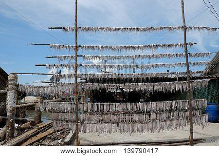 Dried Fish Ca Mau Fishing Village