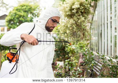 Male scientist in clean suit spraying pesticides on plants at greenhouse