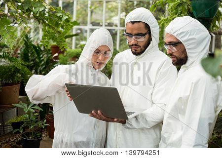 Scientists in clean suit discussing over laptop at greenhouse