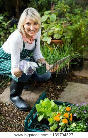 Portrait of mature female gardener holding potted plant while using digital tablet at greenhouse
