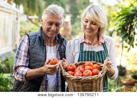 Gardeners smiling while carrying tomato basket outside greenhouse