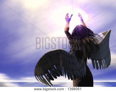 Angel - 01