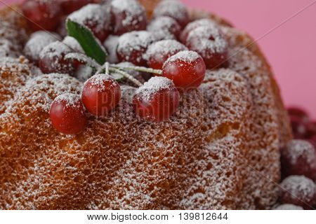 Celebratory Cake With Cherries