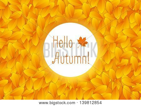 Orange autumn leaves and white circle background. Bright autumn fall season vector design
