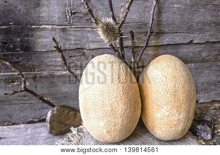 Two ripe melon  with branches and stones on a background of an old wooden board