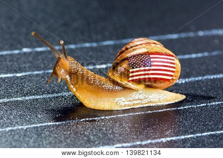 Snail under flag of United States on sports track moves to finish line