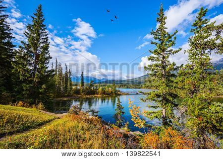Frosty morning in the Rocky Mountains, Canada. Pyramid Lake among the tall pines and firs