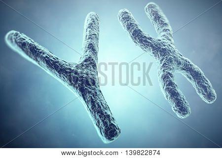 XY Chromosome concept. Male Heterogametic Sex. 3d illustration