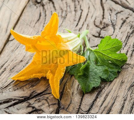 Zucchini flowers on a old wooden table.
