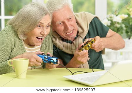 Portrait of a happy senior couple playing video game