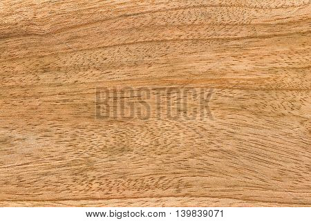 Closeup background texture photo of wood with natural pattern