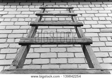 Rise on an wooden ladder on a brick background