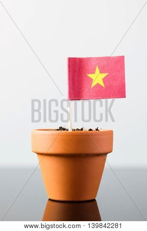 Flag Of Vietnam In A Plant Pot