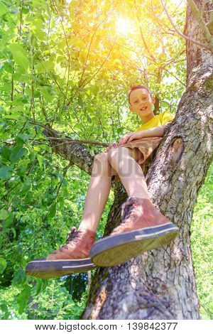 Smiling boy on tree. Summer time!