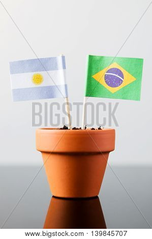 Flags Of Argentinia And Brazil