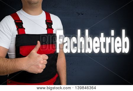 Fachbetrieb (in German Professional Business) Is Shown By The Craftsman