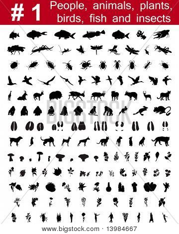 Set # 1. Big collection of collage vector silhouettes of people, animals, birds, fish, flowers and insects