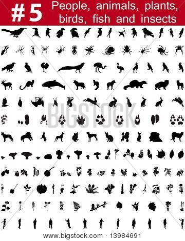 Set # 5. Big collection of collage vector silhouettes of people, animals, birds, fish, flowers and insects