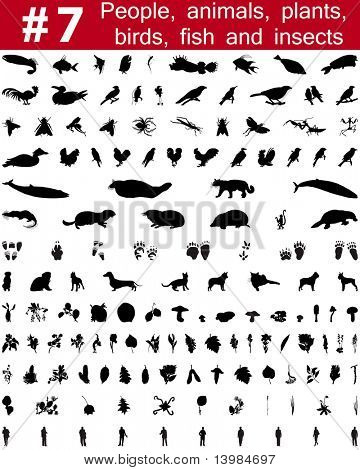 Set # 7. Big collection of collage vector silhouettes of people, animals, birds, fish, flowers and insects