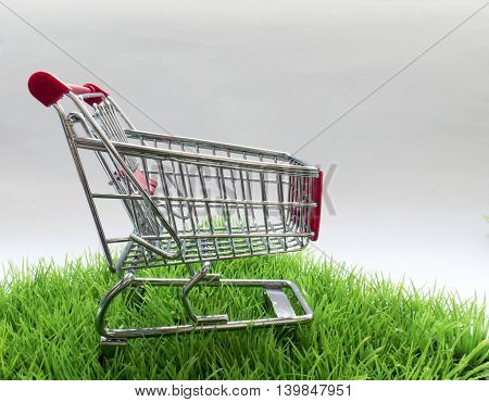 The original pattern of purchases for recreation and natural products