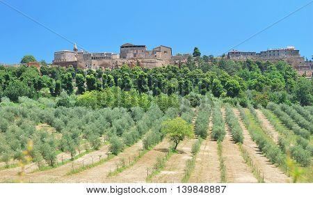 famous medieval Village of Orvieto near Terni in Umbria,Italy
