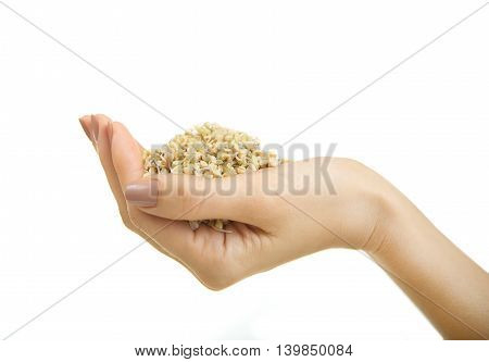 Fresh Green Sprouts Buckwheat in the spoon Closeup. Female hand holding Spoon with Sprouts Buckwheat on white background. Raw Healthy Organic Diet. Healthy Vegetarian Eco Food concept Dieting