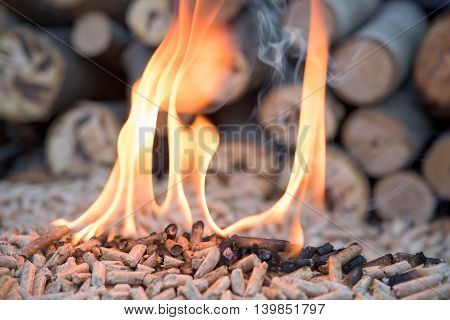 Pellets in flames infront pile of wood