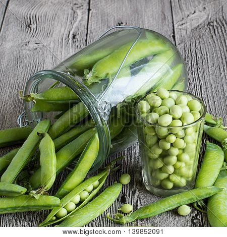 Pods of green peas in a bank and peeled peas in a glass on a gray wooden table.
