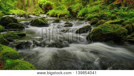 Wild spring river running through the woods with stones