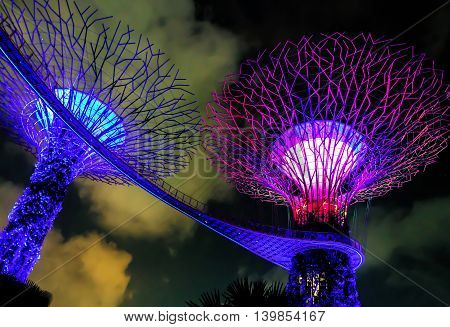 Supertree Grove In The Gardens By The Bay In Singapore