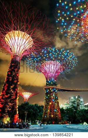 Supertrees Grove At Gardens By The Bay In Singapore