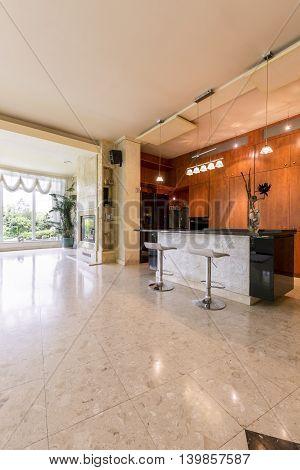 Luxurious Kitchen In Modernist Style