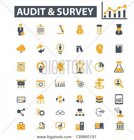audit survey icons
