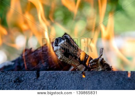 fire burning birch wood in an iron brazier