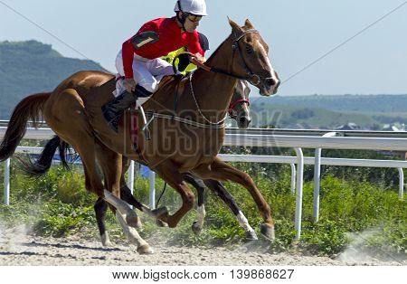 Horse race for the traditional prize Sravnenia in Pyatigorsk,the largest in Russia.