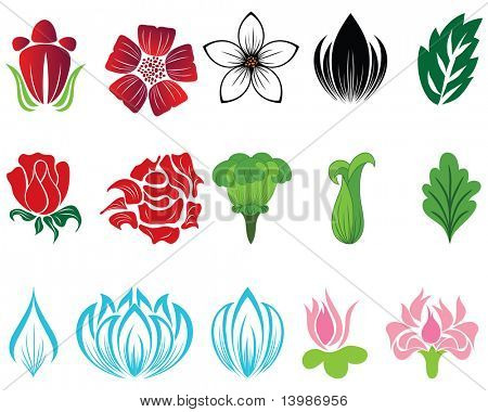 Set of different flower and leaves for self-supporting making floral ornate. In my portfolio also available vector version of this picture.