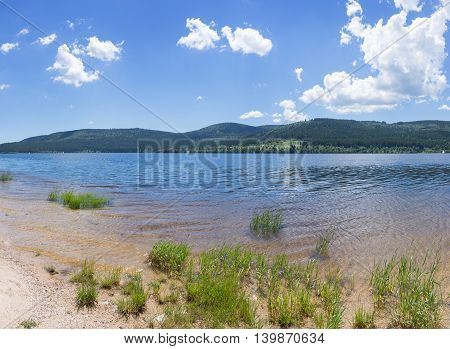 Grass on the shore of a lake, taken at the lake Schluchsee in the Black Forest, Germany.