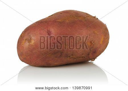 ripe new fresh potato on white background