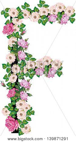 illustration with letter F from rose and brier flowers isolated on white background
