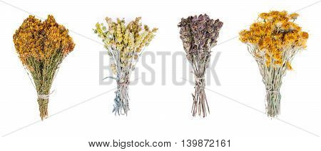 various fresh herbs hanging isolated on white background.