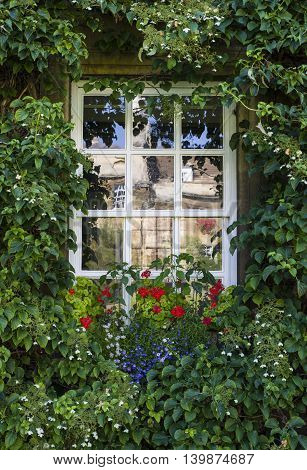 CAMBRIDGE UK - JULY 18TH 2016: Beautiful flowers and plants around one of the windows at Christ's College in Cambridge on 18th July 2016.