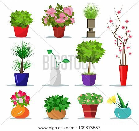Set of colorful flowerpots for house. Flat style indoor pots for plants and flowers. Vector illustration isolated. Collection of modern flower pots and vases.