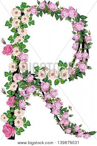 illustration with letter R from rose and brier flowers isolated on white background