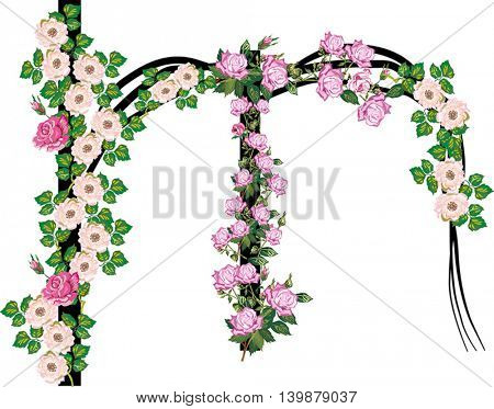 illustration with letter M from rose and brier flowers isolated on white background