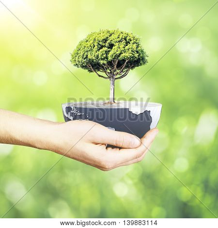 Male hand holding half a globe with large tree on abstract background. Green earth concept. 3D Rendering