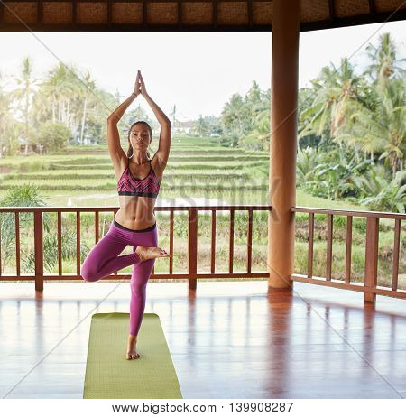 Young Woman Doing Yoga Exercise Tree Pose